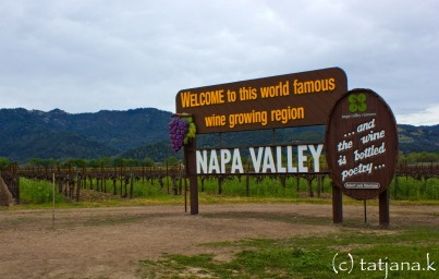 napa valley-1 copy
